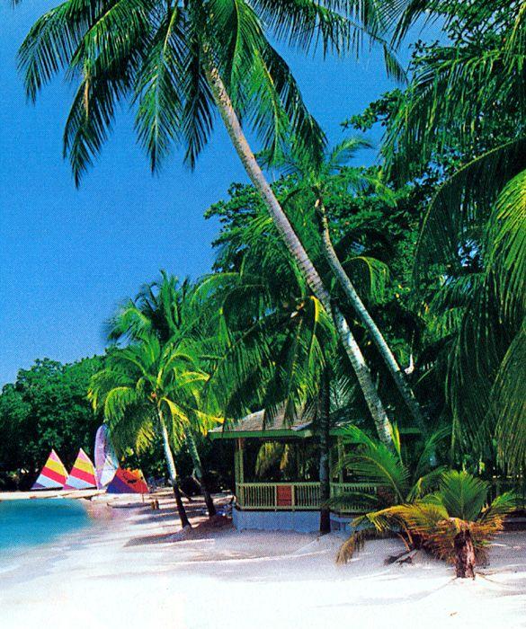 The 25 Best Negril Jamaica Ideas On Pinterest Negril Hotels In Negril Jamaica And Hotels