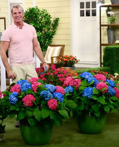 7 best garden qvc images on Pinterest Plants Dream garden and