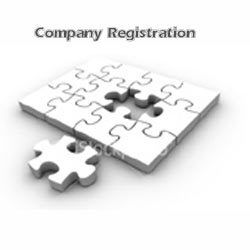 Image result for Company registration services in usa photo