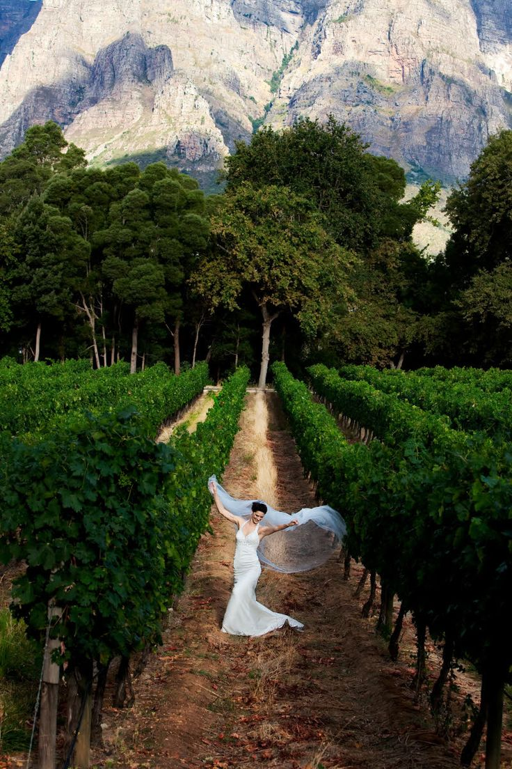 Bride in white frolicking in vineyards with mountains in background - photo by South Africa based wedding photographer Greg Lumley