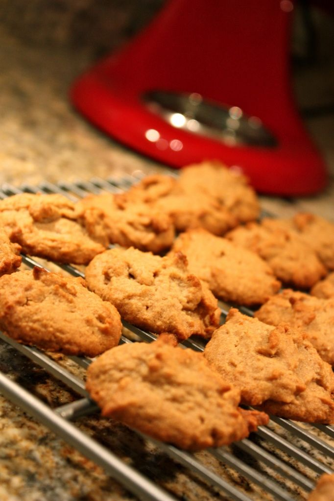 SCD Peanut Butter Cookies - spread out wide so only do a small soon of mixture. Leave in oven turned off to crisp up