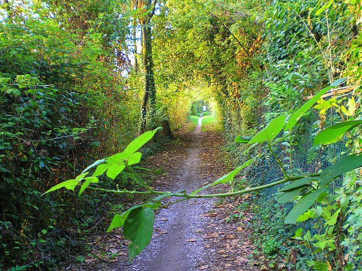 Pathway in Bassano Del Grappa, Vicenza, Italy.