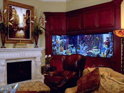 Para quienes les gustaría tener un acuario en casa, en esta galería de imágenes podrán encontrar algunas ideas que sirvan de inspiración para crear su propio acuario. Las peceras que se elijan para el acuario varían en cuanto a tamaño y forma, las hay grandes, medianas y pequeñas, así como cuadradas y rectangulares. La dimensión …