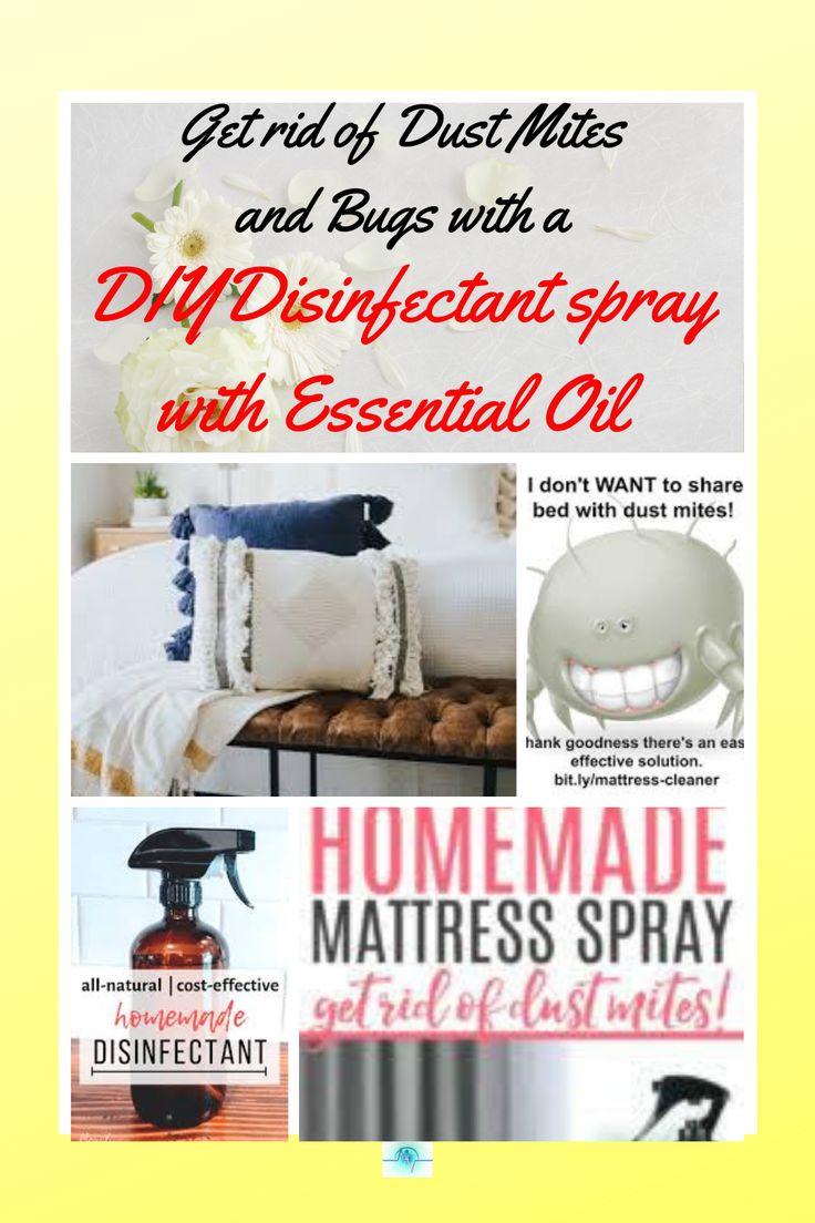 Diy disinfectant sprays in 2021 ant spray diy mattress