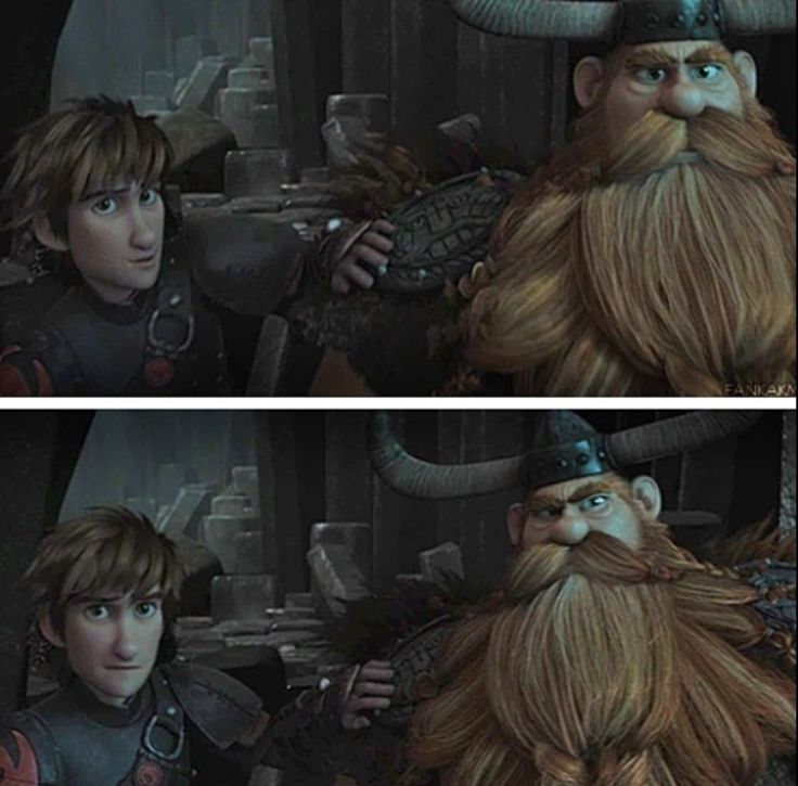how to train your dragon stoick