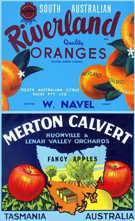 Australian Fruit Growers labels vintage print South Australia & Tasmania http://www.vintagevenus.com.au/products/vintage_poster_print-fd404