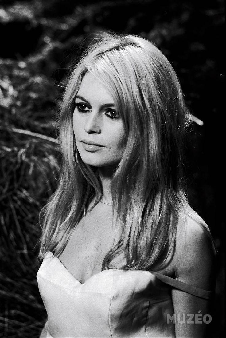 Pin By Denny Griffin On Brigitte Bardot