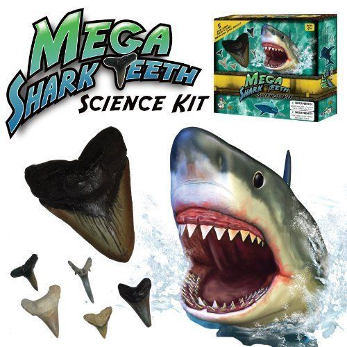 Mega Shark Teeth Science Kit Children, Kids, Game. Featuring five real shark teeth, the Mega Shark Teeth Science Kit allows children to actually hold the tools sharks used to capture and eat their prey!
