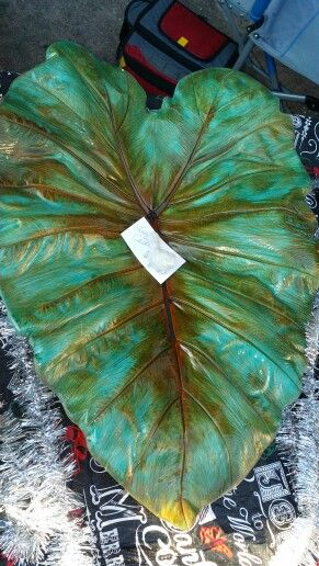 5098 Best Folhas Images On Pinterest Cement Leaves