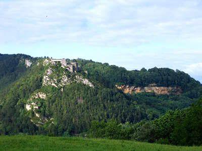 Cette itinéraire de Salins-les-Bains à Saint-Amour, s'épanouissent les vignes du Revermont. Le « Bon Pays », comme on l'appelle ici, présente des blancs au goût particulier qui exaltent les saveurs du sol jurassien et des rouges aux arômes surprenants.
