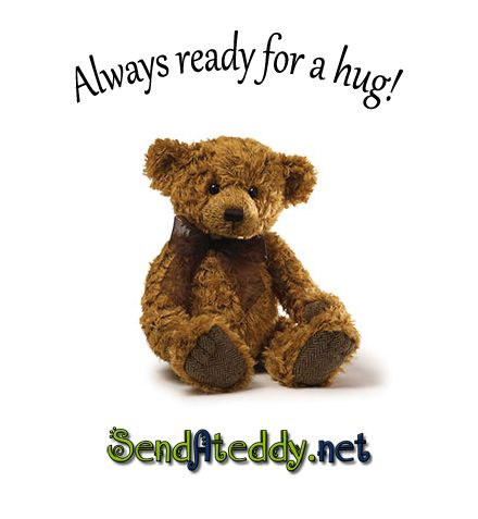 Send A Teddy Bear  #sendateddy #teddybeargifts http://goo.gl/rr6CXS