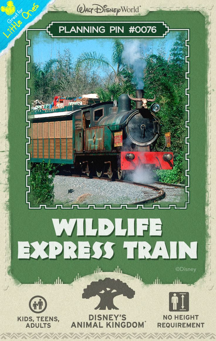 Walt Disney World Planning Pins: Ride the rails on this rustic locomotive that travels behind-the-scenes from Harambe, Africa to Rafiki's Planet Watch.
