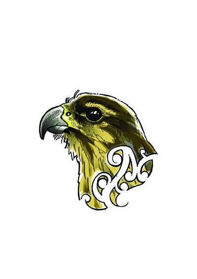 Joel Nicholls Kura Gallery Maori Art Design New Zealand Aotearoa Printmaker Digital Karearea Falcon