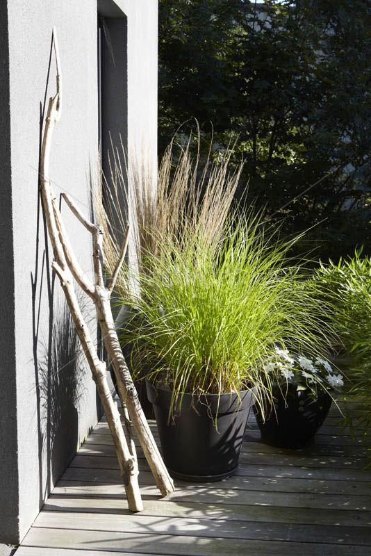 Une terrasse moderne avec ses gros pots sombres plantés de graminées. Www.monjardin-materrasse.com