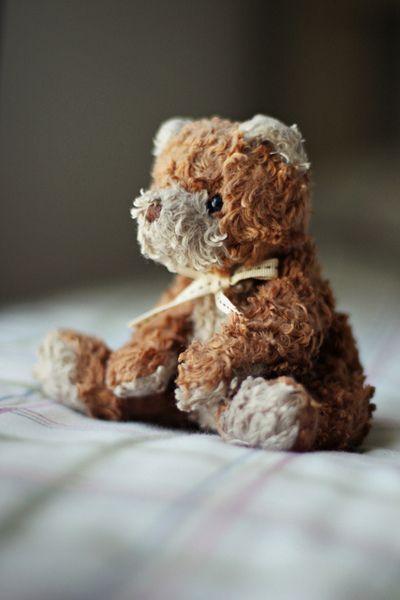 sweet teddy (well loved)