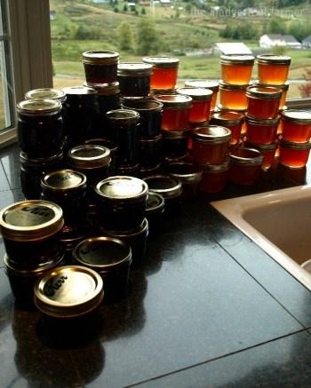 No pectin Nectarine or Plum Jam - For canning