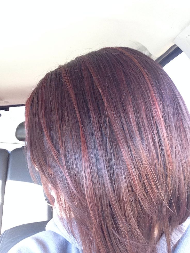 Long Bob Dark Cherry Base With Merlot Highlights It S
