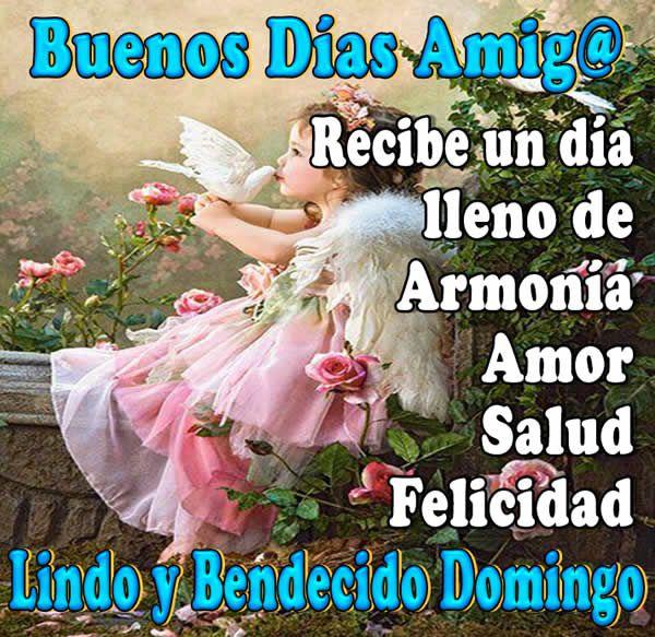Buenos días amigos, recibe un día lleno de armonía, amor, salud y felicidad, lindo y bendecido domingo. Domingo es el séptimo y último día de la semana civ