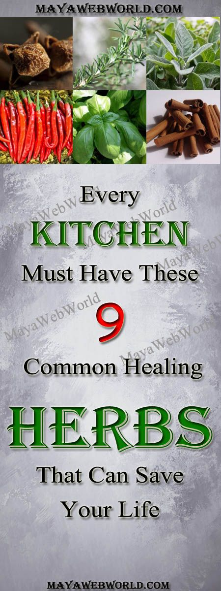 Every Kitchen Must Have These 9 Common Healing Herbs That Can Save Your Life – MayaWebWorld