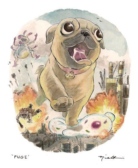 pug illustration, pug, @niall eccles #cotd
