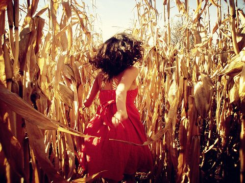 Great photo idea for senior pictures, family pictures, wedding pictures, or with the kids! Especially in a rural areas with corn fields!