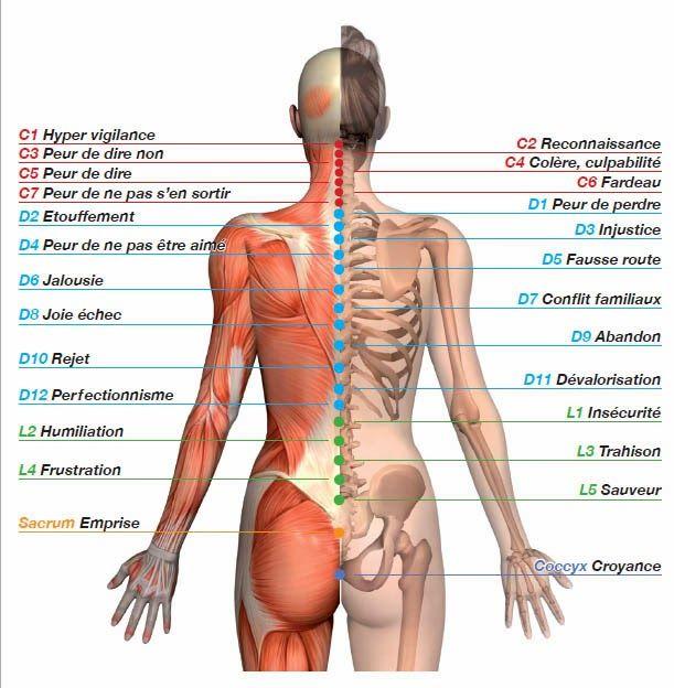 Valerie.D Reflexologie Plantaire: Le mal de dos