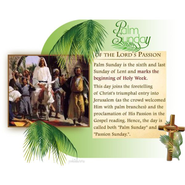 Palm Sunday of the Lord's Passion   JESUS ~ Name Above All