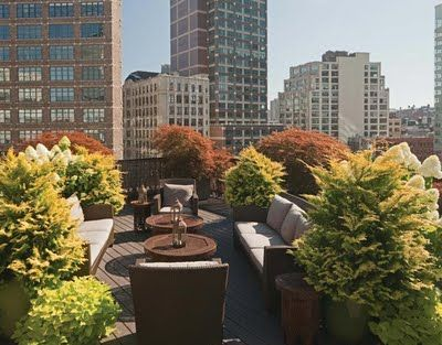 exPress-o: NYC rooftop gardens RELOADED!