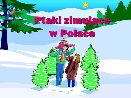 Ptaki zimujące w Polsce>
