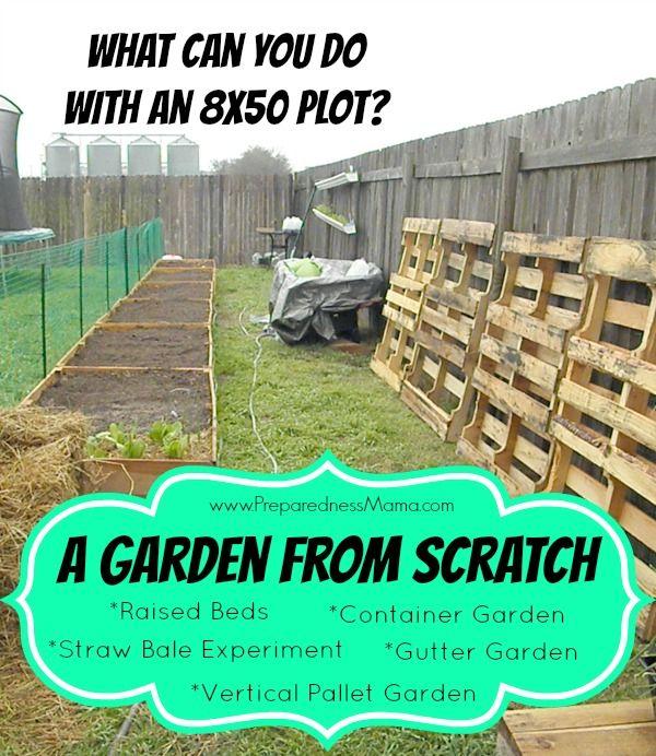 25 Best Ideas About Starting A Garden On Pinterest Raised Gardens When To Plant Garden And