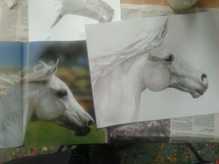 caballo, tinta china