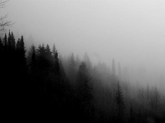 16x24 print • mountain air by plumandcedar on Etsy