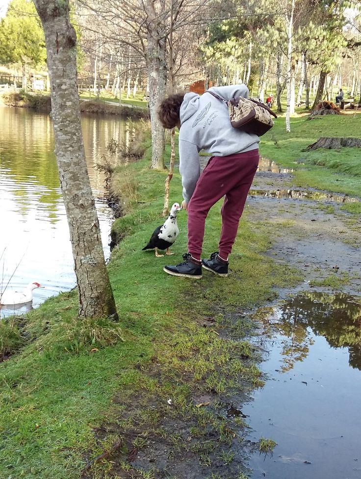 Lago y ecoparque de Castiñeiras