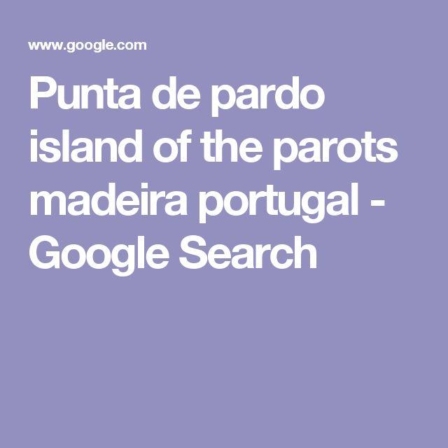 Punta de pardo island of the parots madeira portugal - Google Search