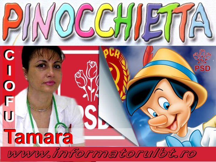 Sora lui Pinochio este deputat. Vezi unde a dat cu oiștea Ciofu-lită…