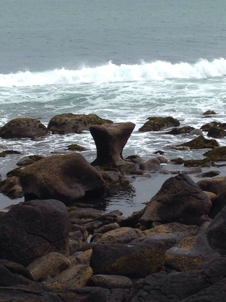 Whale Bay, Raglan, New Zealand