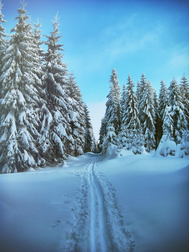 Wintertraum Erzgebirge