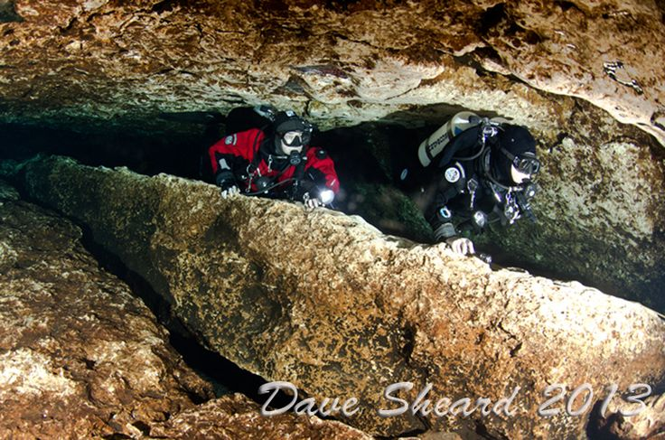 florida cave diving | Thread: Some pictures from our Florida cave diving