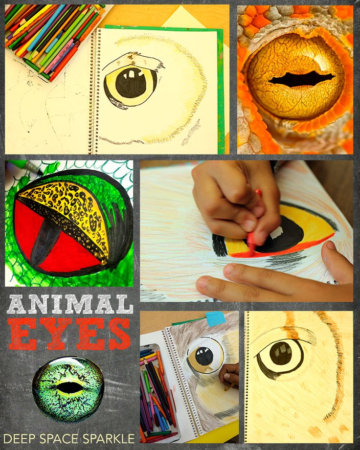 46 best Sixth Grade Art Lessons images on Pinterest   Art kids, Deep ...