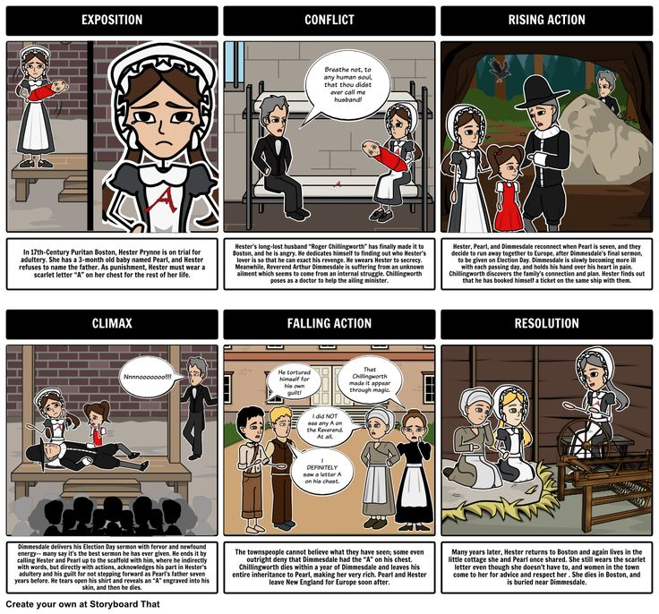 an analysis of the character hester pyrnne in the scarlet letter novel by nathaniel hawthorne Of all the characters in the scarlet letter, hester prynne,  com/the-scarlet-letter-character-analysis-hester  the scarlet letter by nathaniel hawthorne .