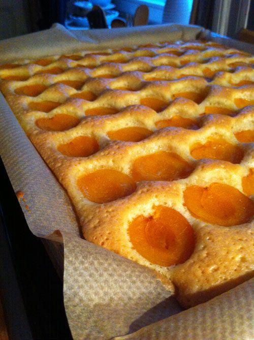 Anke Gröner» Blog Archive » Aprikosenkuchen vom Blech