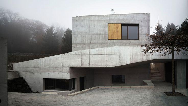955 best house landscape images on pinterest modern for Modern house zurich