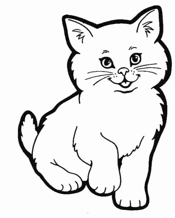 Cat Cartoon Coloring Pages Photos