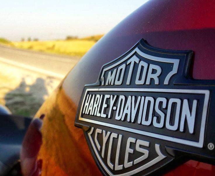 #hd#harleydavidson #lifestyle #freeride #motorcycle #americanhorse #usa #nightster #passion #conerogarage #nofilter http://www.butimag.com/hd/post/1468531104771467298_4698444792/?code=BRhRUJZg-gi