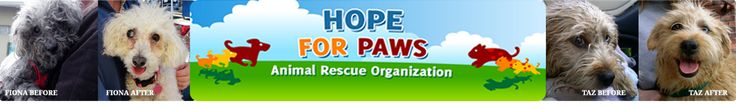 Hope For Paws - Animal Rescue