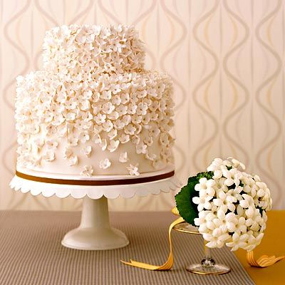 small wedding cake new york city 31 best ideas about stephanotis bridal bouquet on 20231