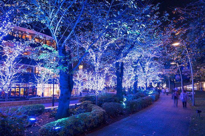 「ミッドタウン・クリスマス 2016」東京・六本木で- 幻想的な青いイルミネーションで宇宙空間を再現 写真13