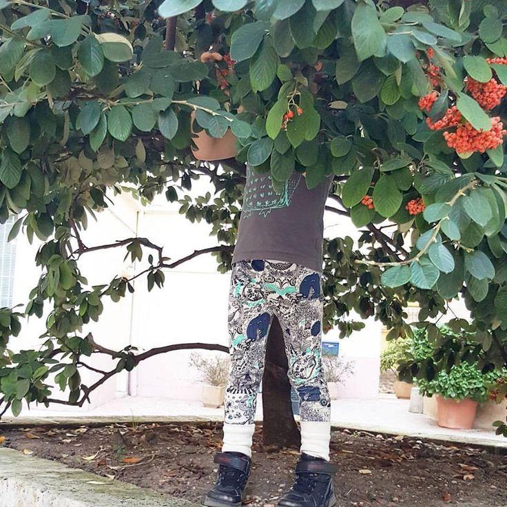 Du haut de ses 6ans, PtitLoup adore toujours autant s'habiller en Aarrekid. Qualité, originalité, durabilité sont au rendez-vous. Collections à retrouver sur ELOisBIO 📷 eloisbio