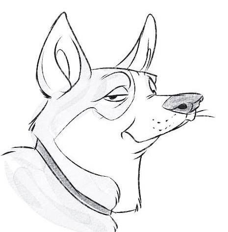A friends funny drawing of my dog Boris / Akita Inu :D