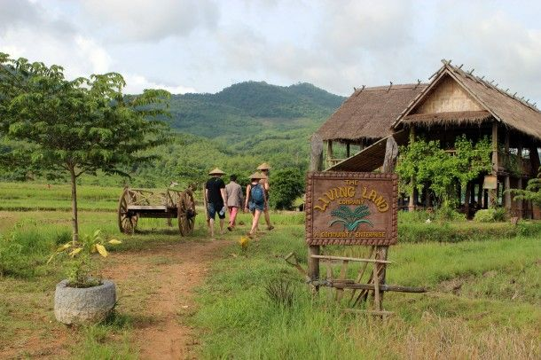 The Living Land Farm in Luang Prabang Laos - a community initiative to teach organic and traditional rice farming methods in Asia